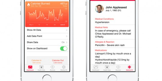 healthkit-apples-health-software-development-kit-sdk-view01